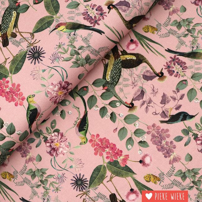 Poppy Canvas Botanical garden Pink