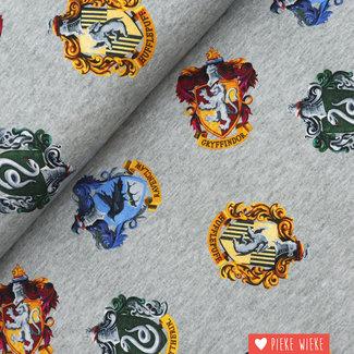 Jersey Harry Potter Grey melange