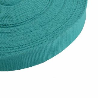 Webbing Teal 25mm