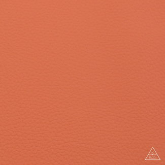 Zipper zoo Artificial leather Basic Dark orange
