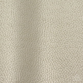K-Bas Artificial leather Metallic  Champagne