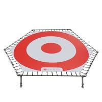 Target 300