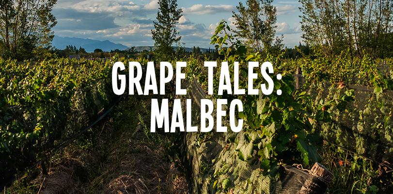 Grape tales: Malbec