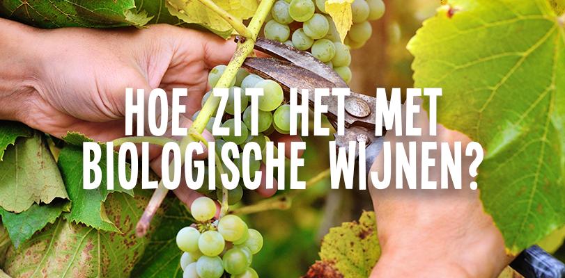 Hoe zit het met biologische wijnen?