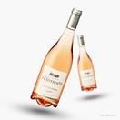 La Catherinette Côtes du Rhône Rosé 2020
