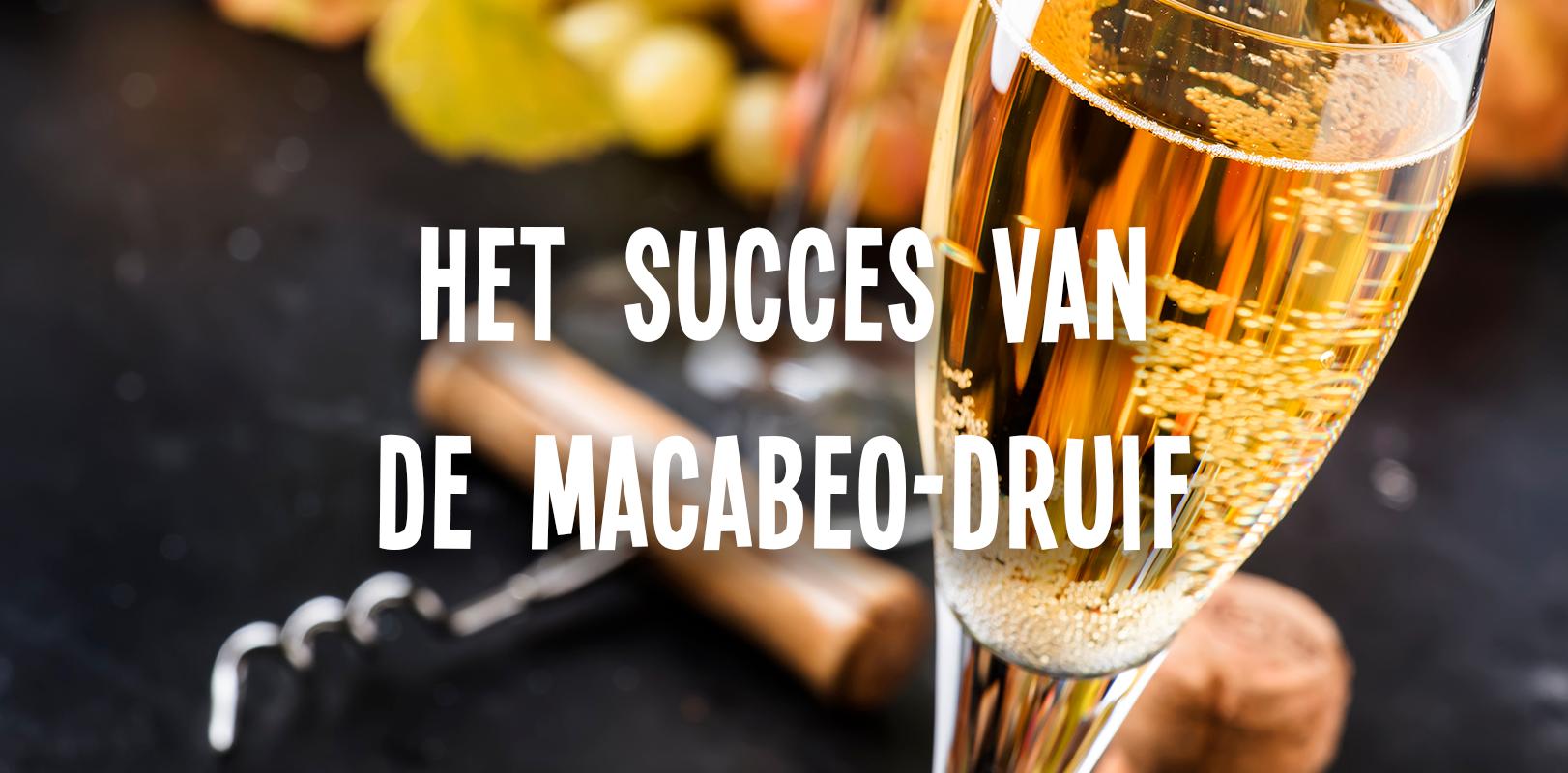 Het succes van Macabeo en Cava