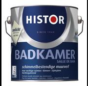 Histor Muurverf Badkamer 9010