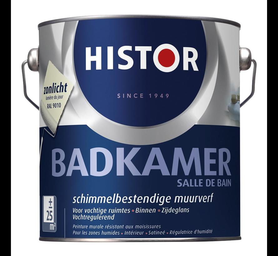 Muurverf Badkamer 9010