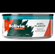 Bolivia Acryl Plamuur