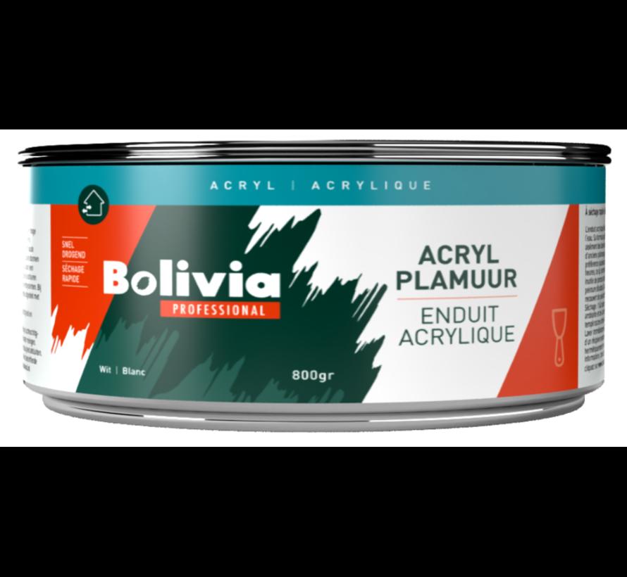 Acryl Plamuur
