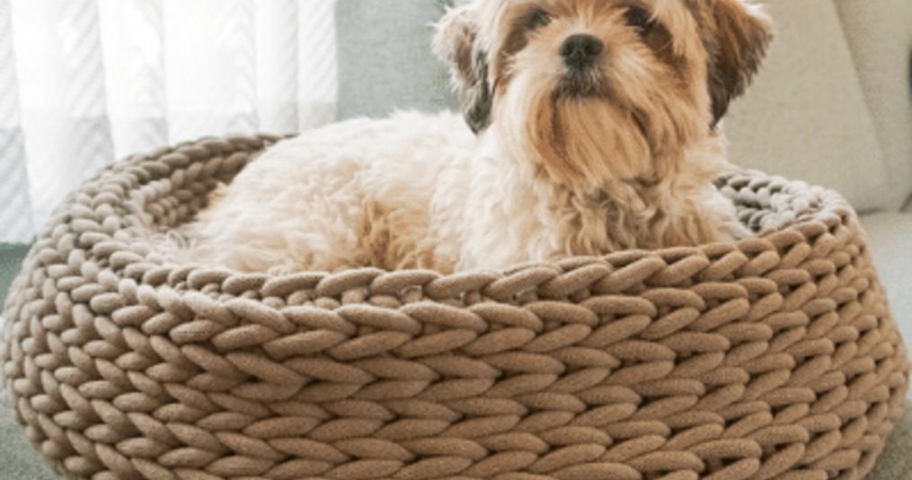 Bobbiny-haakpatroon: hondenmand