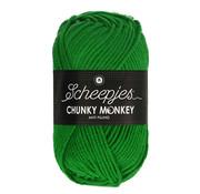 Scheepjes Scheepjes Chunky Monkey 2014 Emerald