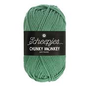 Scheepjes Scheepjes Chunky Monkey 1725 Eucalyptus