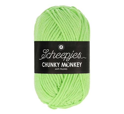 Scheepjes Scheepjes Chunky Monkey 1316 Pistachio