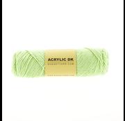 Budget Yarn Budget Yarn Acrylic DK 081 Lettuce