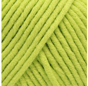 Yarn and Colors Yarn and Colors Fabulous 84 Pistachio