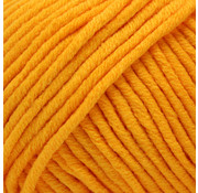 Yarn and Colors Yarn and Colors Fabulous 15 Mustard