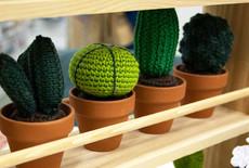 7 x fantastische patronen om cactussen te haken