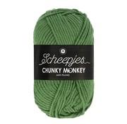 Scheepjes Scheepjes Chunky Monkey 1824 Pickle