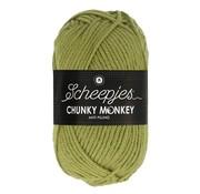 Scheepjes Scheepjes Chunky Monkey 1065 Sage