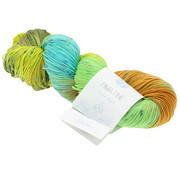 Lana Grossa Pima Fine Hand-Dyed 0703