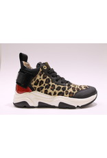 Andrea Morelli sneaker luipaard