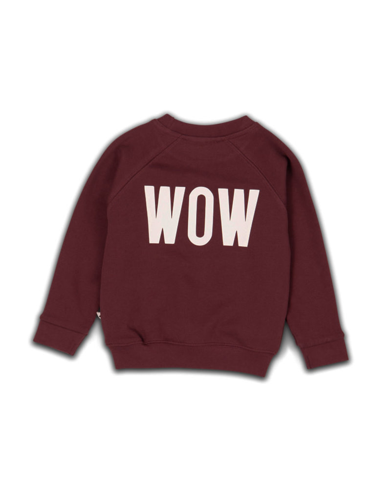 Cos I Said So sweater bordeau POW WOW