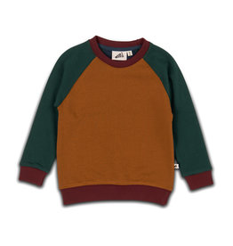 Cos I Said So sweater color block