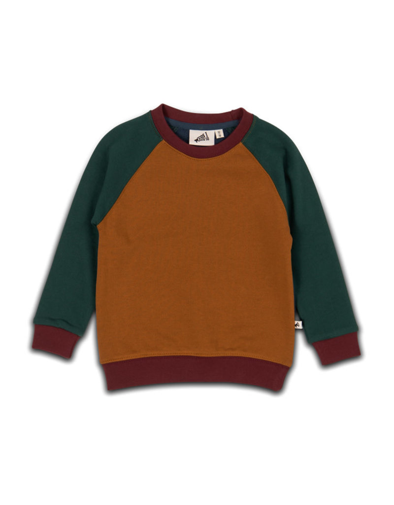 Cos I Said So sweater color block