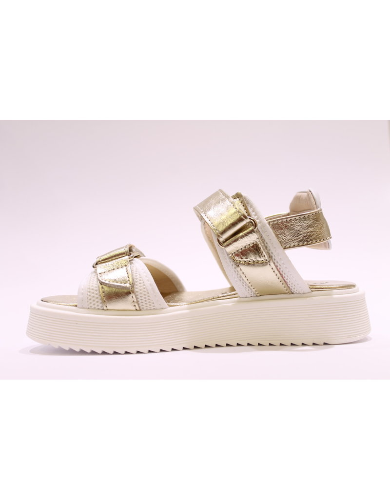 Andrea Morelli sandaal goud