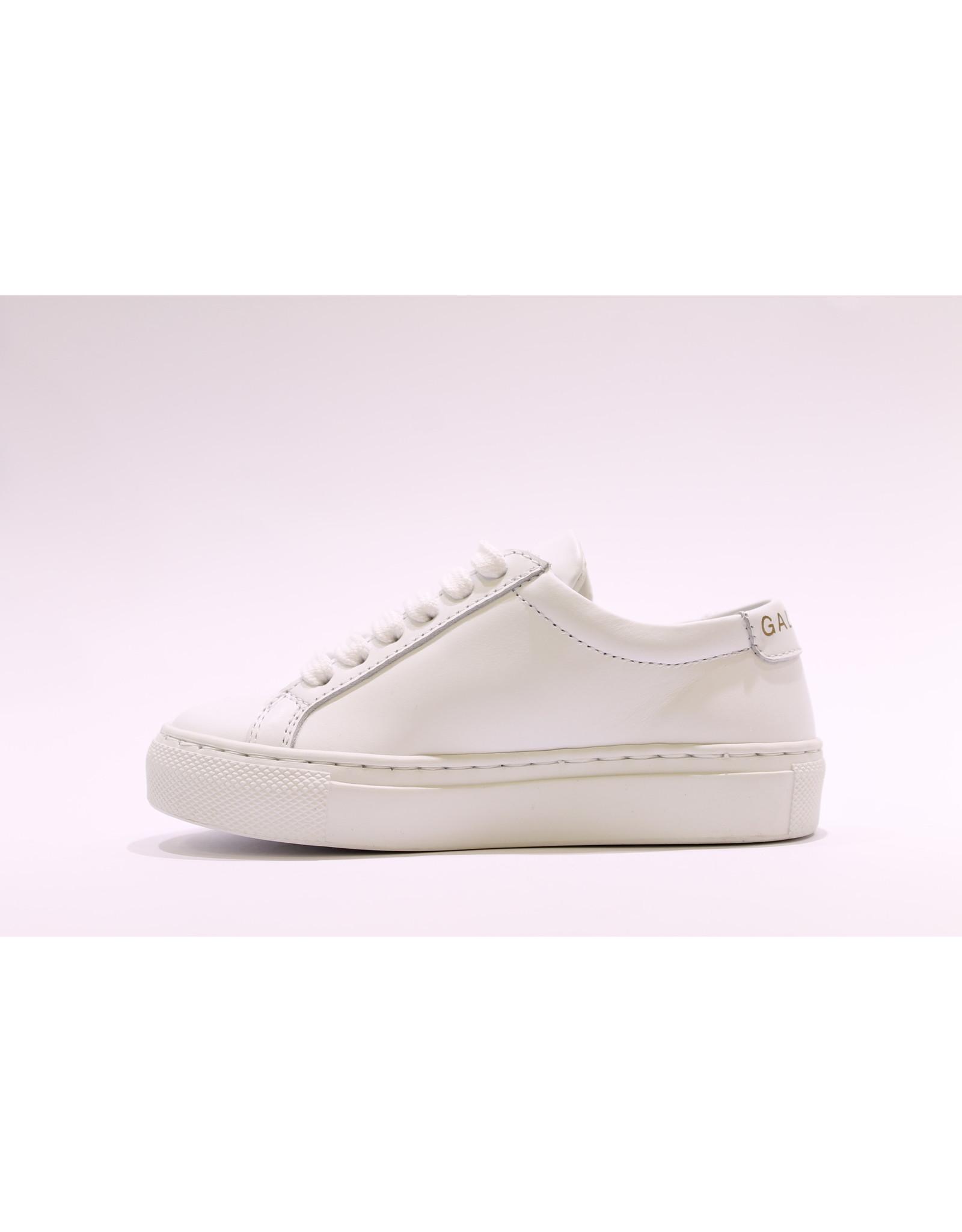 Gallucci sneaker wit