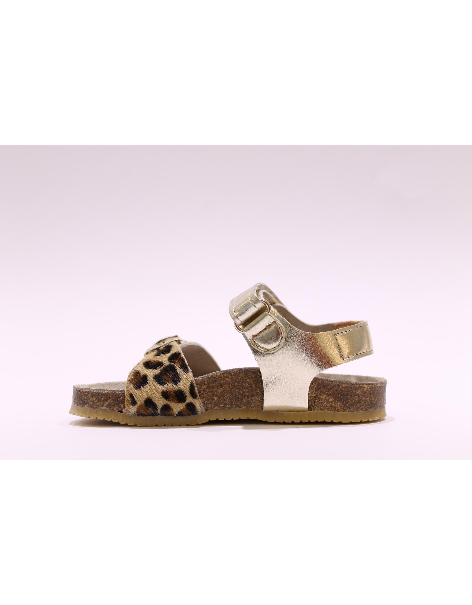 Lunella sandaal velcro goud/leopard