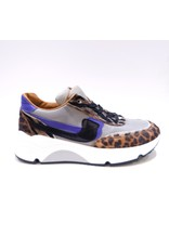 Rondinella runner leopard purple