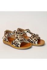 Pom d'Api sandaal poppy buckle leopard