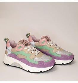 Rondinella runner purple mint