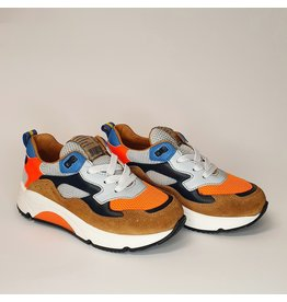 Rondinella runner orange