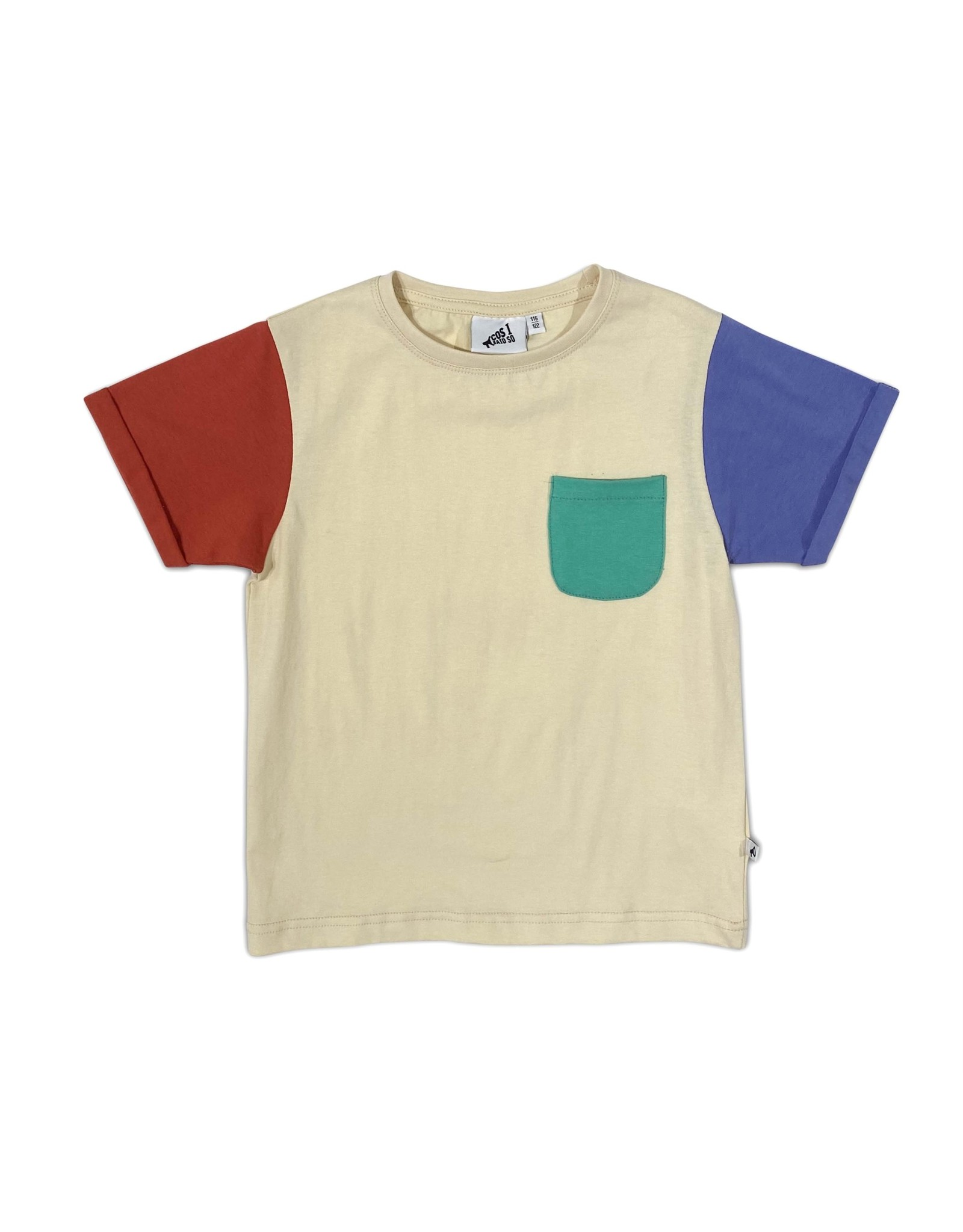Cos I Said So color block t-shirt navajo