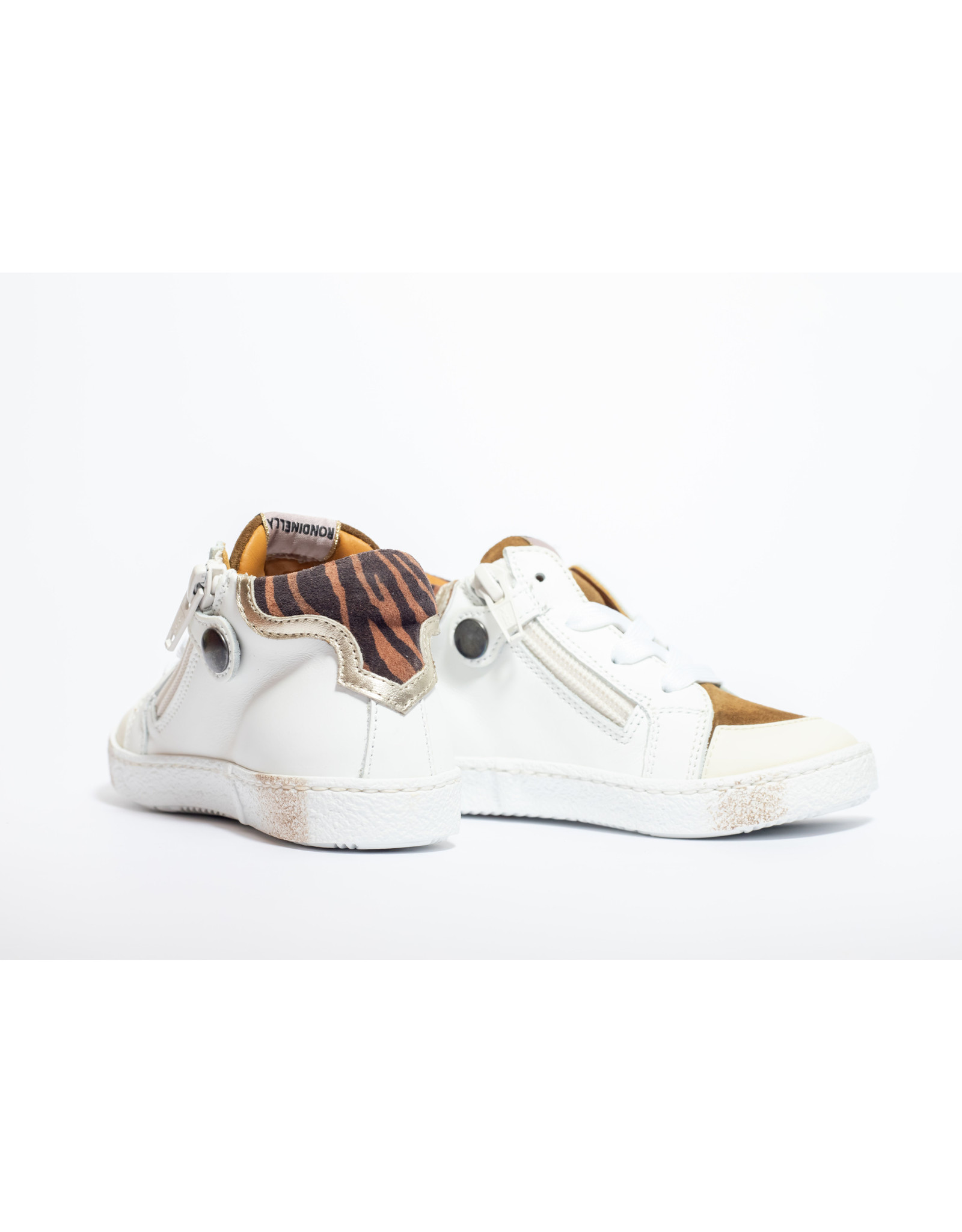Rondinella sneaker wit/bruin ster
