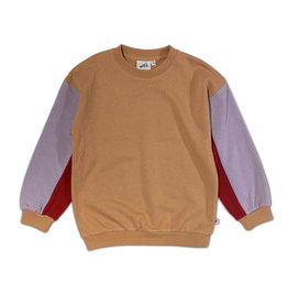 Cos I Said So color block sweater
