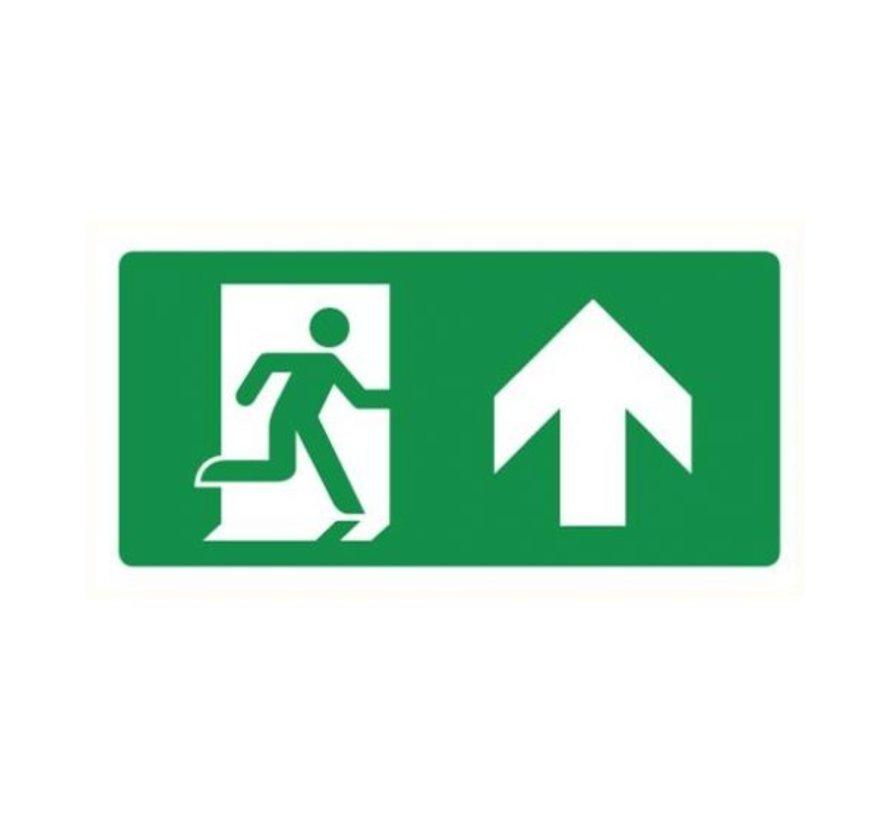 Nooduitgang rechts pictogram