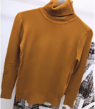 Basic Col Mosterd - ONESIZE