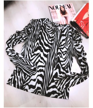 Zebra Top Stretch