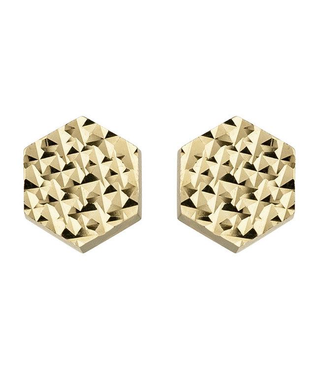 JOBO Gouden oorstekers zeshoek 8 karaat 333 6 mm