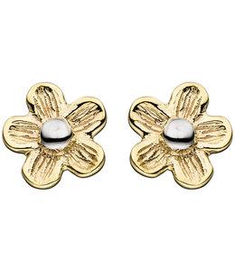 Aurora Patina Gold earstuds Flower matted