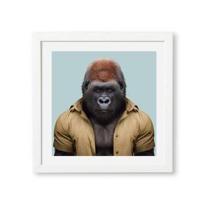 Yago Partal Western Lowland Gorilla Zoo Portrait