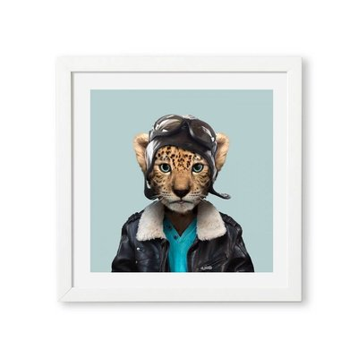 Yago Partal Amur Leopard Zoo Portrait