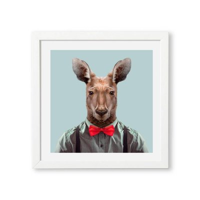 Yago Partal Red Kangaroo Zoo Portrait