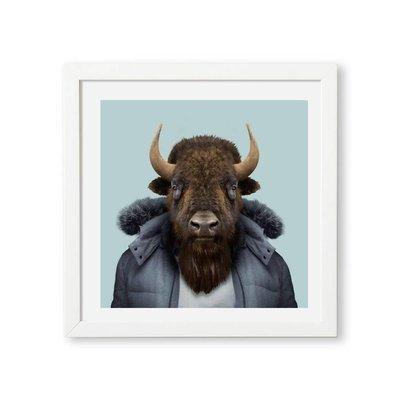 Yago Partal American Bison Zoo Portrait