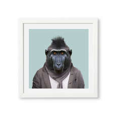Yago Partal Poster Celebes Crested Macaque