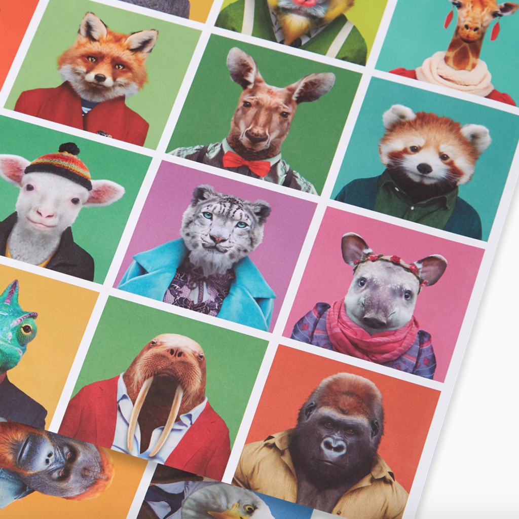 Yago Partal Zooportraits Poster & Inpakpaper